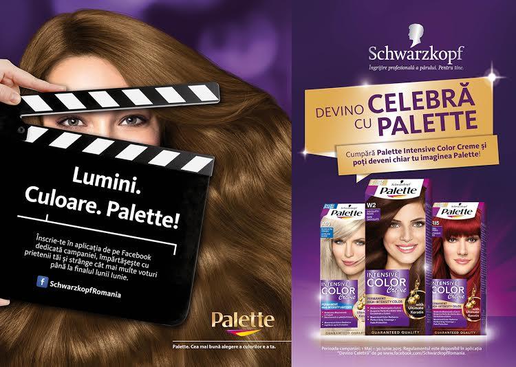 palette)