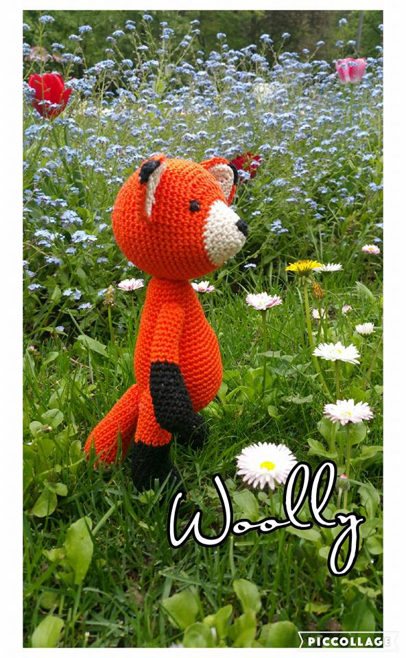 woolly_jucariicrosetate_vulpe1